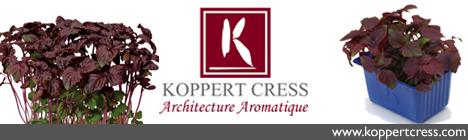 banner-koppert-cress